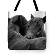 I Just Need A Hug. The Black Pony Bw Transparent Tote Bag