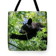 I Want That Acorn Tote Bag
