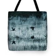 Ibsis Flying In At Sunset To Roosting Ground Tote Bag by Dan Friend