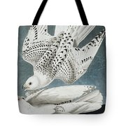 Iceland Falcon Or Jer Falcon By Audubon Tote Bag