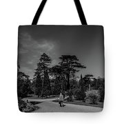 Ickworth House, Image 41 Tote Bag