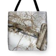 Austere Beauty  Tote Bag