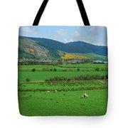 Innerleithen In The Tweed Valley Tote Bag
