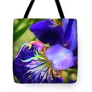 Iris Osirus Tote Bag by Cindy Greenstein