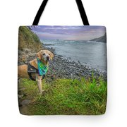 Jackson At Cape Arago Tote Bag by Matthew Irvin