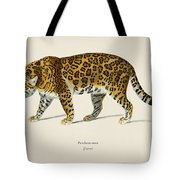 Jaguar  Panthera Onca  Illustrated By Charles Dessalines D' Orbigny  1806-1876  Tote Bag