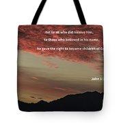 John 12 Tote Bag