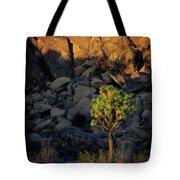 Joushua Sunset 1 Tote Bag