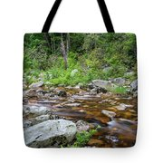 June Morning At The Peterskill Tote Bag