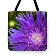Just A Stroll Tote Bag
