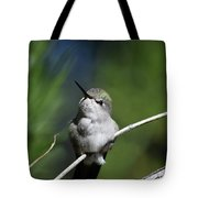 Just Sitting Here Being Cute Tote Bag