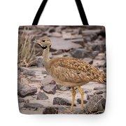 Karoo Korhaan Tote Bag