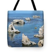 Kayaking At Shell Beach Tote Bag by Art Block Collections
