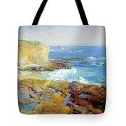 Laguna Rocks Low Tide 1916 Tote Bag