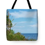 Landscape By The Sound Tote Bag