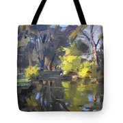 Last Suntouches In Ellicott Creek Park  Tote Bag