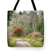 Late Leaves Tote Bag by Nick Bywater