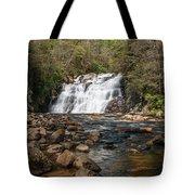 Laurel Falls In Spring I Tote Bag