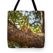 Lc13 Tote Bag by Joshua Able's Wildlife