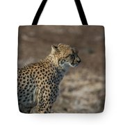 LC5 Tote Bag by Joshua Able's Wildlife
