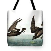 Least Stormy Petrel, Thalassidroma Pelagica By Audubon Tote Bag