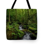 Lee Falls Cascades Tote Bag