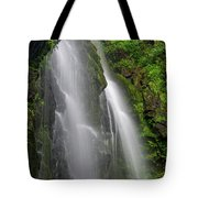 Lee Falls Close Up Tote Bag