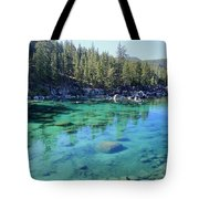 Let's Get Naked  Tote Bag by Sean Sarsfield