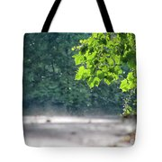 Letting Off Steam Tote Bag