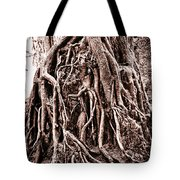 Life Is Complicated - Sepia Tote Bag