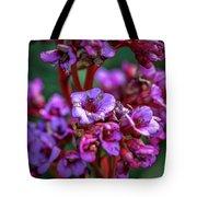 Lilac #h9 Tote Bag