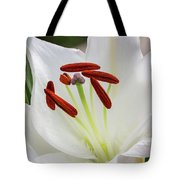 Lily Casa Blanca 3 Tote Bag