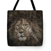 Lion Safari Tote Bag