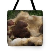 Lion's Feet Tote Bag