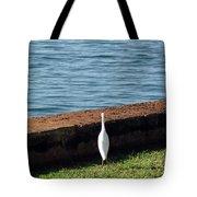 Little White Egret Egretta Garzetta Tote Bag
