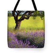 Lone Tree In Lavender And Mustard Fields Tote Bag by Brian Jannsen