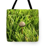 Lonely Little Mushroom Floating On The Grass Tote Bag