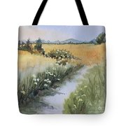 Looking Towards Canadian  Cascades Tote Bag