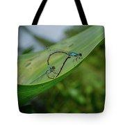 Love On A Leaf Tote Bag
