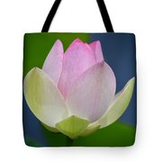 Lovely Soft Lotus Tote Bag