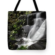 Lumsdale Falls 10.0  Tote Bag