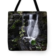 Lumsdale Falls 12.0 Tote Bag
