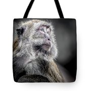 Macaque - Looking Back Tote Bag by Ron Pate