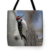 Male Downy Woodpecker Tote Bag