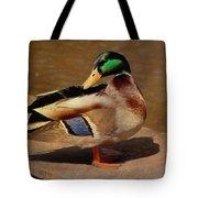 Male Mallard - Painted Tote Bag