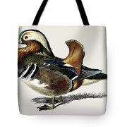 Mandarin Duck  Aix Galericulata Illustrated By Charles Dessalines D' Orbigny  1806-1876 1 Tote Bag