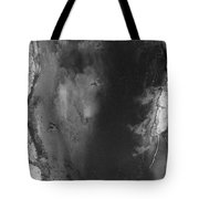 Manistee River Aerial Black And White Panorama Tote Bag