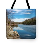 March Morning At Sanctuary Pond Tote Bag
