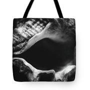 Marine Minimalism  Tote Bag