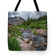 Mayflower Creek Tote Bag by Bitter Buffalo Photography